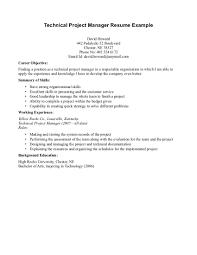 project lead resume sample resume templates sample template project lead resume sample manager resumes sample project resume frudgereport manager resumes sample project resume