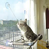 Amazon Best Sellers: Best <b>Cat Window</b> Perches