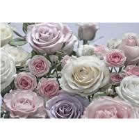 <b>Фотообои бумажные Komar</b> Floraison 8-736 3,68х2,54 м, цена ...