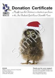 donation certificates bird rescue charitable trust 0010 morepork chick on a santa hat