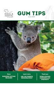 <b>Koala</b> Hospital, Protecting our <b>Koalas</b> for the future. Port Macquarie ...