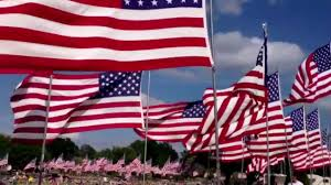 Image result for flag day 2013