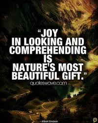 Joy Quotes, Famous Quotes and Sayings about Joy | Page 8 | Quoteswave