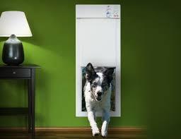 Электронная <b>дверь</b> для домашних животных