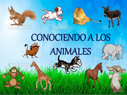 http://primerodecarlos.com/SEGUNDO_PRIMARIA/diciembre/Unidad5/actividades/cono/animales/cargadorALPIXEL.swf