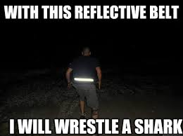 WITH THIS REFLECTIVE BELT I WILL WRESTLE A SHARK - Air Force Humor ... via Relatably.com