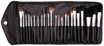 professional platinum brush set