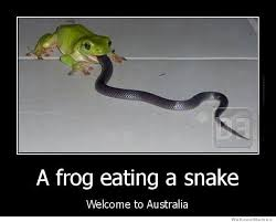 Welcome To Australia | WeKnowMemes via Relatably.com