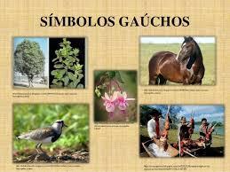 Resultado de imagem para IMAGENS DE COMIDAS TIPICAS DO RIO GRANDE DO SUL