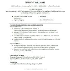 carpenter resume example template carpenter resume example
