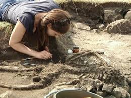Hasil gambar untuk arkeolog