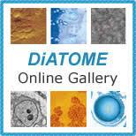 DiATOME <b>Diamond Knives</b>
