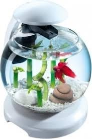 <b>Tetra Cascade</b> Globe White- <b>аквариумный комплекс</b> - шар 6,8 ...