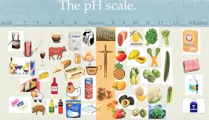 Image result for ph scale plants