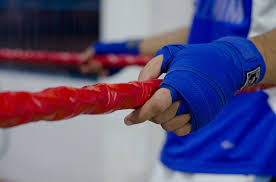 Image result for blue boxing glove