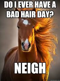 Do I ever have a bad hair day? Neigh - Ridiculously Photogenic ... via Relatably.com