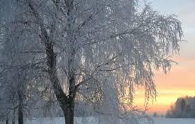 Znalezione obrazy dla zapytania sroga zima fotki