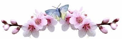 Image result for nature divider