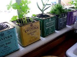 Small Picture Invigorate your kitchen with an indoor herb garden Abbeywood