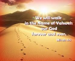 Image result for Micah 4: 1