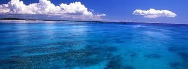 Resultado de imagen para dia mundial de los oceanos