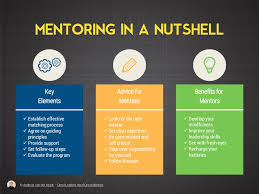 mentoring in a nutshell copy