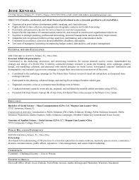 example external affairs resume   free sample