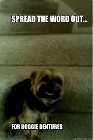 Smile Dog memes | quickmeme via Relatably.com