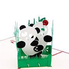 Paper Spiritz <b>Panda</b> 3D Pop up Birthday Card Wedding Christmas ...