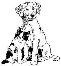 Το φαράγγι του Σκύλου και της Γάτας...