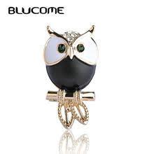 white <b>owl bird</b>