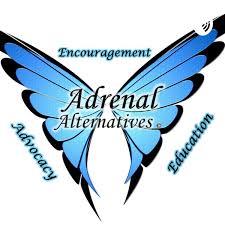 Addy Chat- Adrenal Alternatives Foundation Podcast