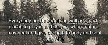 John Muir quote - Current Inspiration via Relatably.com