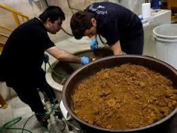 Reuters'in objektifinden Çorum'da altın üretim tesisi