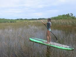 photo essay paddleboarding in cabarete n republic turf cabarete lagoon n republic