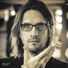 <b>Steven Wilson</b> - <b>Transience</b> (2015, 180g, Vinyl) | Discogs