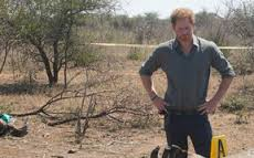Prince Harry just broke our hearts in the most beautiful way with this Instagram picture