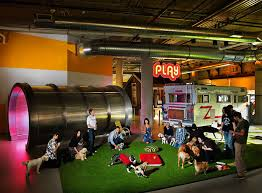 amazing creative workspaces office spaces 11 1 amazing office interiors