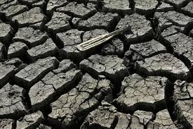 photos california s brutal drought shows no signs of yielding a boat paddle is shown on the bottom of the nearly dry almaden reservoir near san