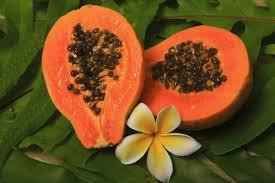 Resultado de imagen de papaya fruta
