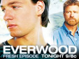 "... die bestes Familien-Entertainment mit sympathischen Darstellern bietet, wobei ""sympathisch"" bei Stars wie Treat Williams oder James Earl Jones leicht ... - everwood"