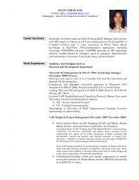 sample resume templates pdf php developer resume pdf resume it job summaries sample resume summary for it professionals resume it professional resume sample it professional resume