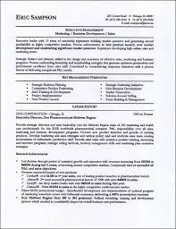Resume professional profile help Alib Nurse Resume Profile Statement Writing Career Profile Professional Profile  For Your Resume Resume Examples Objectives Skylogic