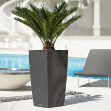engaging modern metal planter boxes for inspiring ideas with black rattan planter wicker planter garden pots delightful plants charming office plants