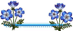 Resultado de imagem para barrinhas para separar texto em blog