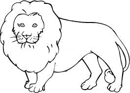 Small Picture Beautiful Lion Coloring Pages Photos Coloring Page Design