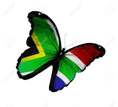 Image result for south african flags pictures