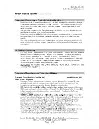 examples of resumes resume career summary professional samples resume career summary examples professional summary resume samples throughout 87 enchanting sample professional resume