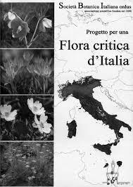 333-361 Foggi et al - Festuca e generi affini per una flora critica dell