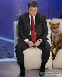 В расследовании об офшорах Порошенко есть элементы манипуляций, - Стець - Цензор.НЕТ 3772